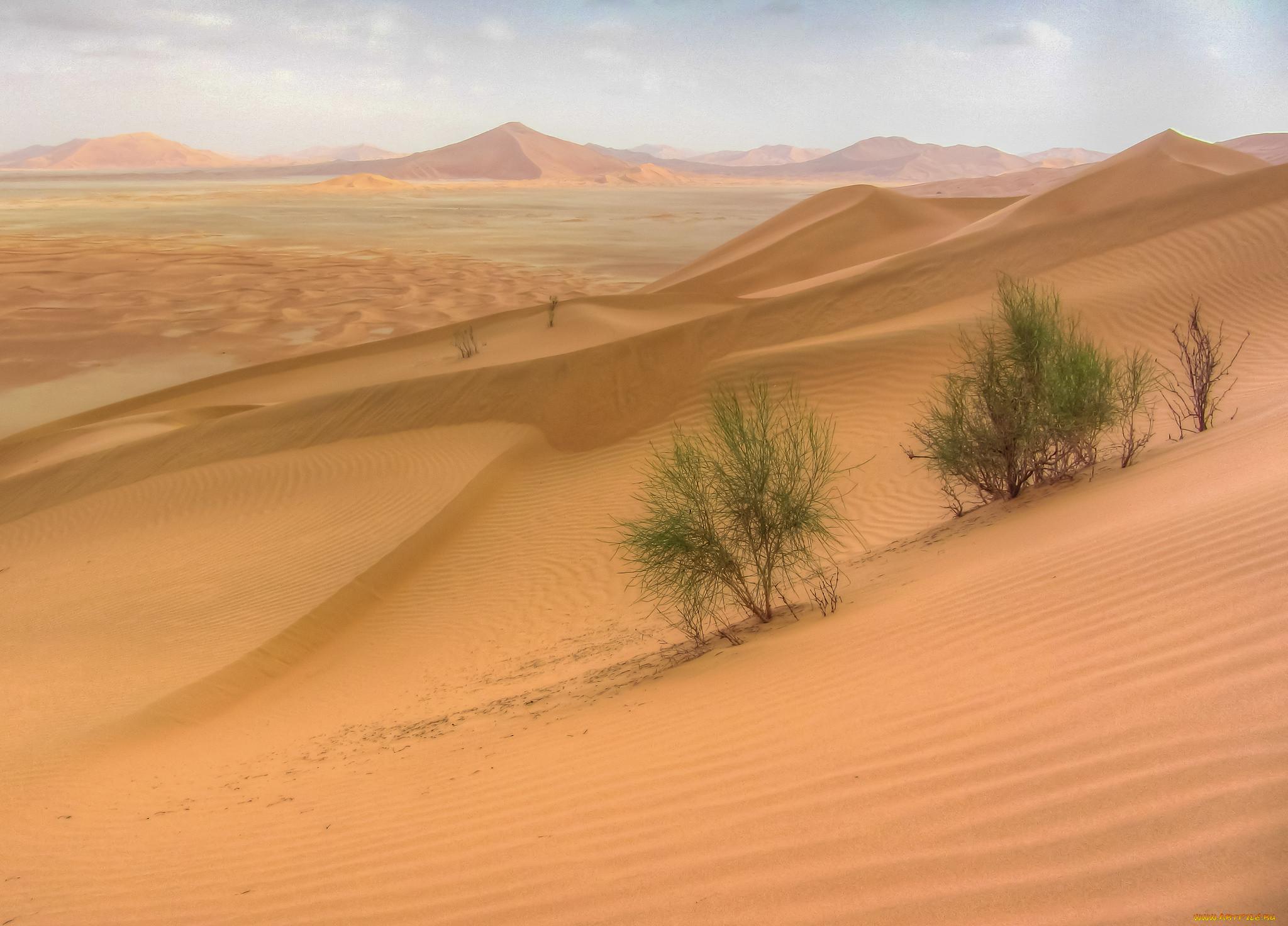 Пустыня картинки россии